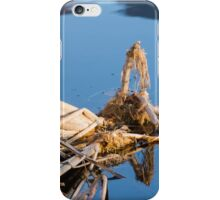 landscape lake iPhone Case/Skin