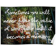 Sometimes you will never know the value of something until it becomes a memory Poster