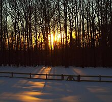 Winter Sunset by Bine