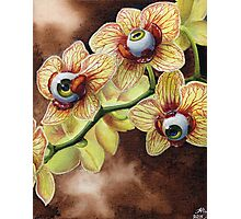 All Seeing Orchid Photographic Print