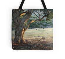 Kangaroos in the Field - Kangaroo Island  Tote Bag