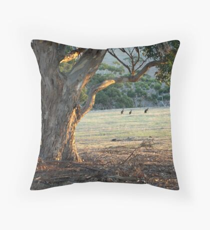Kangaroos in the Field - Kangaroo Island  Throw Pillow