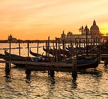 Venice Gondolas by tomhard