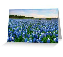 Remembering Bluebonnets at Sunrise 1 Greeting Card