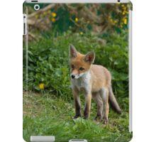 Red Fox cub iPad Case/Skin