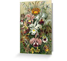 flower artwork Greeting Card