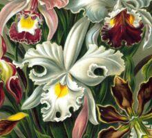 flower artwork Sticker