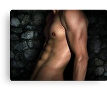 cool nude Canvas Print