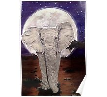 Elephant by Moonlight Poster