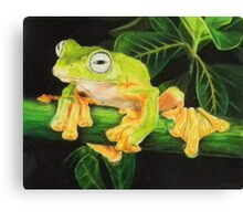 Musky Flying Frog Canvas Print