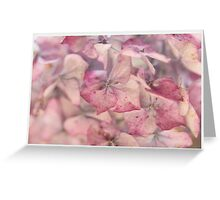 Dusky Pink Hydrangea Greeting Card