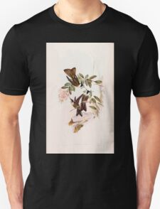 A monograph of the Trochilidæ or family of humming birds by John Gould 1861 V3 276 Oxypogon Lindenii T-Shirt