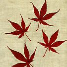 Japanese Maple Leafs II by Madeleine Forsberg