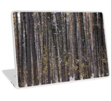 The Pine forest Laptop Skin