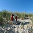 Lifebuoy In The Dunes by Madeleine Forsberg