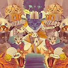 Cats n Books n Books n Cats by MathijsVissers