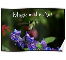 Magic in the Air! Poster