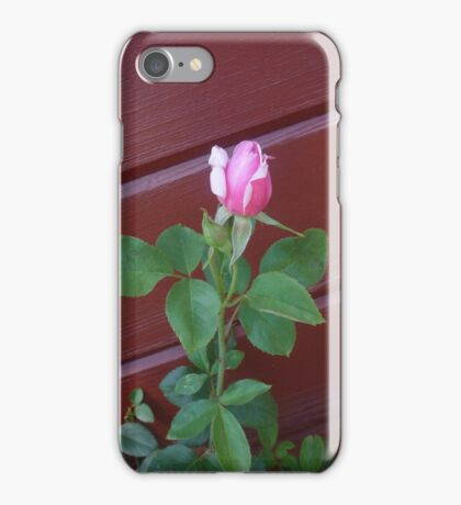 The Rosebud iPhone Case/Skin