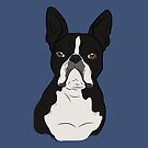 Boston Terrier by rmcbuckeye