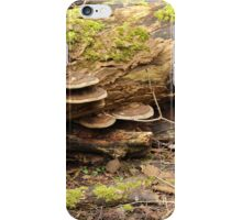 A Touch of The Shire iPhone Case/Skin