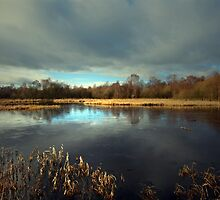 CALM ON THE LOCH by leonie7