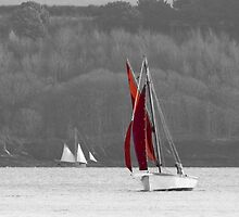 Isolated Yacht Carrick Roads by Terri Waters