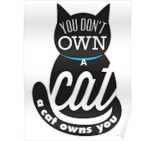 A cat owns you Poster