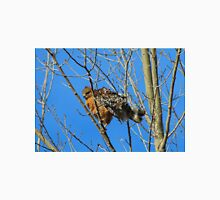 Red-Tailed Hawk Youngster Unisex T-Shirt