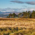 Central Scotland Scenery by Jeremy Lavender Photography
