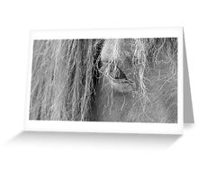 Windows To The Soul Greeting Card