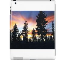 "Because He Called, ""Forest Brother..."" iPad Case/Skin"