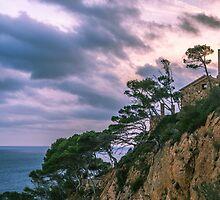 House at the mediterranean sea by dariobrozzi