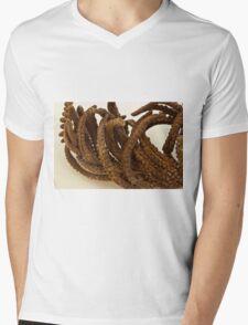 Cinnamon Fern Seeds - Macro  Mens V-Neck T-Shirt