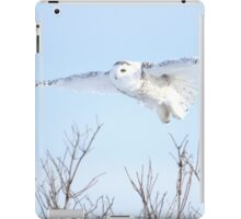 The goddess of gliding iPad Case/Skin