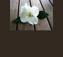 White Dogwood Flower . Womens Fitted T-Shirt