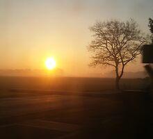 Morning myst by boneur13