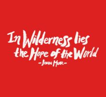 Wilderness Hope x John Muir Baby Tee