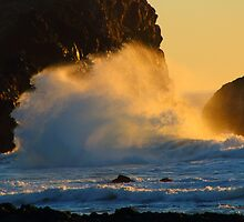Jeremiah 31:5  Who stirs up the sea so that it's waves roar.... by Laurie Puglia