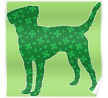 Labrador Retriever St. Patrick's Shamrock Pattern Poster