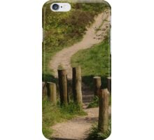 Posts On Path iPhone Case/Skin