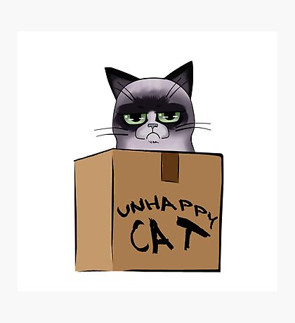 Unhappy Cat Photographic Print