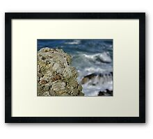 Rock and Rollers Framed Print