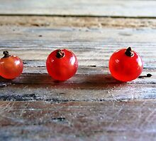 Red berries . by RedCurrant8