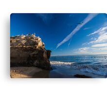 A Squadron of Pelicans Canvas Print