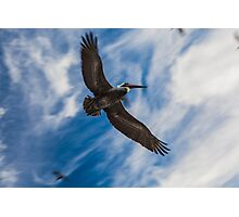 Soaring Above Photographic Print