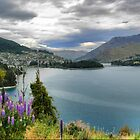 Queenstown on Wakatipu from the Glenorchy Rd by Larry Lingard-Davis