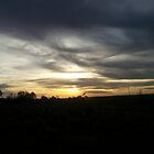 clouds and sunset by sharon wingard