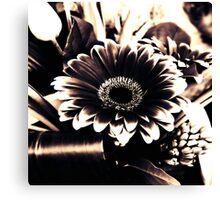Gerber Flower Arrangement in Black & White Canvas Print