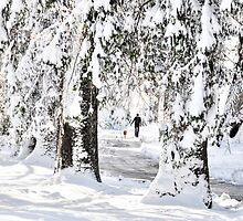 Winter Wonderland Walk... by Poete100