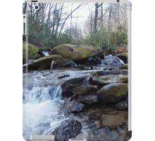 Mountain Stream - Blue Ridge Parkway iPad Case/Skin